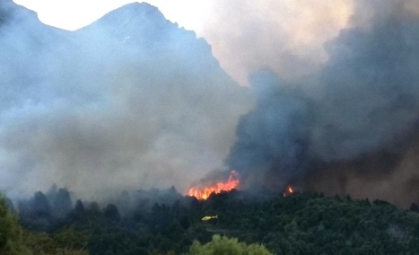 Incendio intencional en Parque Los Alerces - Radio 3 Cadena Patagonia | La pampa inundada ... | Scoop.it