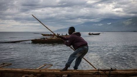 Decline of fishing in Lake Tanganyika 'due to warming' - BBC News | International aid trends from a Belgian perspective | Scoop.it