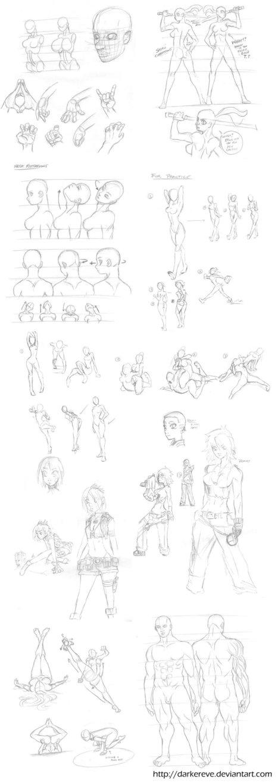 Anatomy Practice Doodles   Student Engagement   Scoop.it
