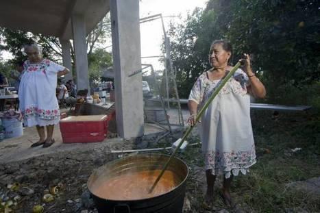 Sin refrigerador, los mayas podían conservar carne usando papaya | Mayapan | Scoop.it
