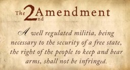 All Federal Gun Laws Are Unconstitutional   Gov & Law - Mitchell Enerson   Scoop.it