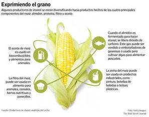 Los productores de etanol apuntan a la diversificación | Infraestructura Sostenible | Scoop.it