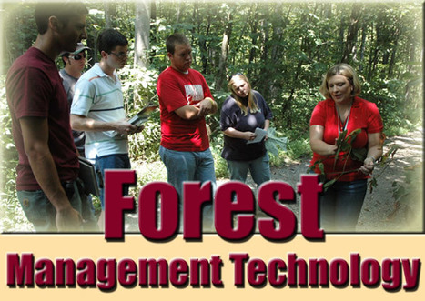 Sustainable Forestry and Forestry Management Complete Guide ... | Sustainable Futures | Scoop.it
