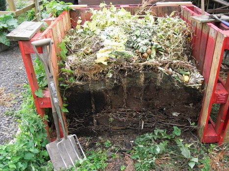 Compost Development | JS App Development | Scoop.it