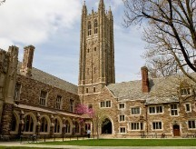 Colleges with the highest-paid graduates | NYL - News YOU Like | Scoop.it