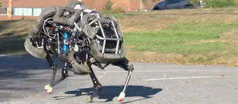 Wildcat, le robot qui court à 25 km/h! | Future of Technology and Engineering | Scoop.it
