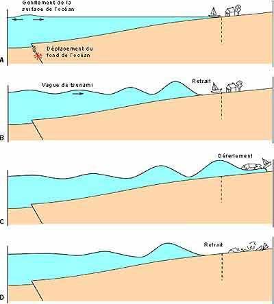 Tremblements de terre et tsunamis : quelle origine ?   Science.gouv.fr   Japon : séisme, tsunami & conséquences   Scoop.it
