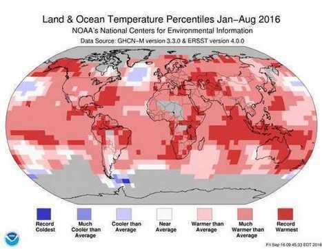 Contin&uacute;a el calor extremo en todo el mundo, seg&uacute;n la OMM<br/> - Agencia Estatal de Meteorolog&iacute;a - AEMET. Gobierno de Espa&ntilde;a | NOTICIAS CIENCIAS SOCIALES NSD | Scoop.it