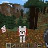 Minecraft Pocket Edition 0.9.1 APK