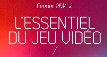 Le marché français du jeu vidéo en 2013 (et les perspectives 2014) | Rubika | Scoop.it