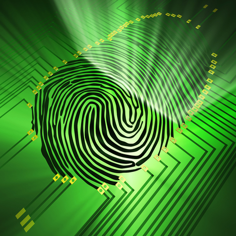 Fingerprints tell all: Progress in fingerprint analysis | Amazing Science | Scoop.it