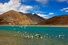 Ladakh Tour, Leh Ladakh Tour, Leh Tourism | Ladakh Tour | Scoop.it