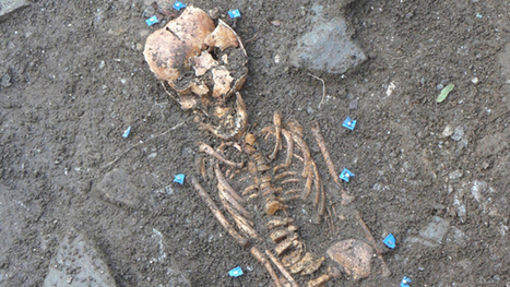 Derry dig uncovers ancient skeletons | Archaeology News | Scoop.it
