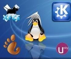Detalles sobre el servidor web virtual con Xubuntu 14.04 | El blog de ... | MSI | Scoop.it