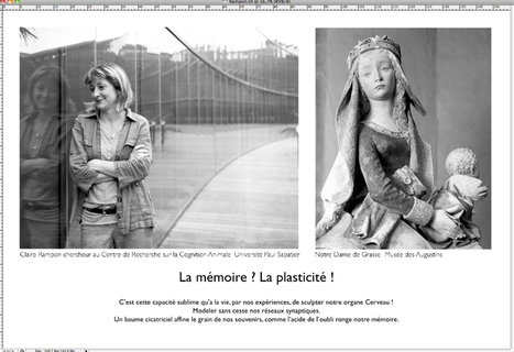 La mémoire, matière à science   artsciencefactory.fr   PLASTICITIES  «Between matter and form, between experience and consciousness, the active plasticity of the world »   Scoop.it