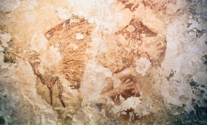 Cave paintings in Indonesia suggest art came out of Africa | The Guardian | Kiosque du monde : A la une | Scoop.it