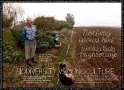 Lexicon of Sustainability: Biodiversity vs. monoculture | Natural Pest Control | Scoop.it