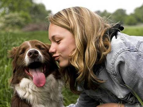 Puckering up with your dog could be good for your health | The Independent (UK) | CALS in the News | Scoop.it