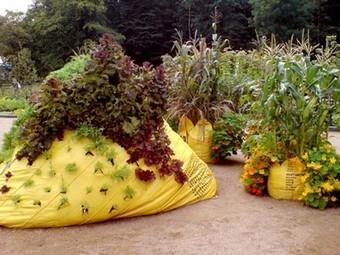 Swedish Garbage Bags Grow Instant Vertical Gardens | Vertical garden | Scoop.it
