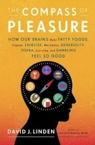 Neurobiology Says Diversify Your Pleasures or Risk Addiction | orgasms | Scoop.it