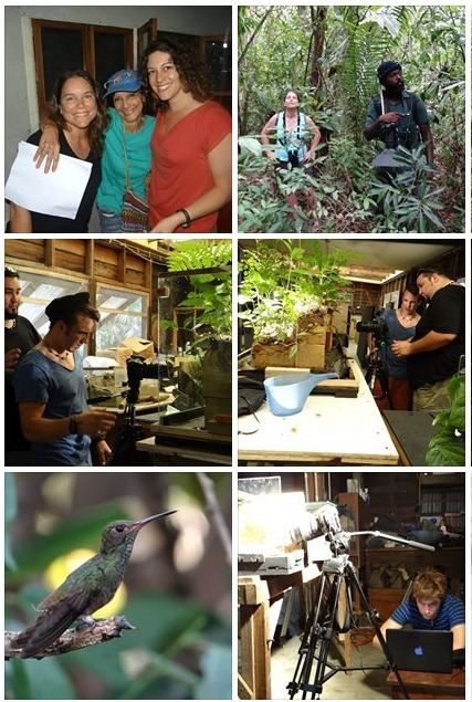 Belize Documentary Field Film Course | Cayo Scoop!  Bestofcayo.com's E-mag. | Scoop.it