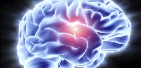 Un modèle qui mime la barrière protectrice du cerveau - Sciences et Avenir | Cerveau intelligence | Scoop.it