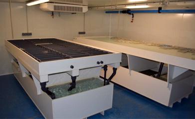 Une nouvelle plateforme pour une aquaculture durable en Lorraine - - Eureka Lorraine : portail de l'enseignement supérieur de la recherche et de l'innovation   aquacultures   Scoop.it
