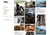 WordPress Themes | WordPress Themes | Yasam Tarzim | Scoop.it