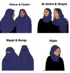 La Belgique est piégée : elle ne peut pas légalement interdire le parti Islam | Belgitude | Scoop.it