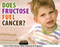 Does Fructose Fuel Cancer? - Vital Choice | Longevity science | Scoop.it