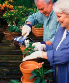 Care Assistant: Fun Activities for the Elderly | Support Senior Citizens | Scoop.it