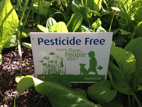 Les espaces verts et les jardins publics bientôt libérés de la pollution des pesticides | Institutionnels | Scoop.it