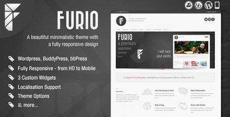 Furio - Responsive Wordpress Theme | Premium Wordpress Themes | Scoop.it