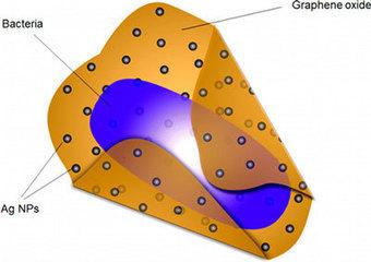 Nanotechnology in plant disease management - Nanowerk | Nanotechnology | Scoop.it