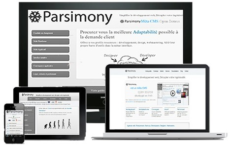Parsimony AMS | DevWeb | Scoop.it