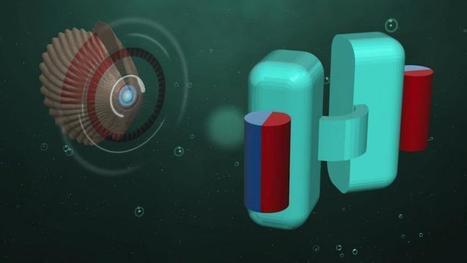 Un mini sous-marin pour voyager dans le corps humain | www.directmatin.fr | J'écris mon premier roman | Scoop.it