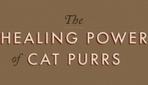 Infographic: The Healing Power Of Cat Purrs - DesignTAXI.com | Les chats c'est pas que des connards | Scoop.it