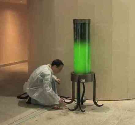 Algae Lamps Generate Energy And Use More CO2 Than Trees - Inventorspot | Light loves shadows | Scoop.it