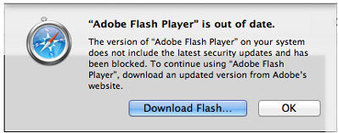 Safari now blocks all but latest version of Flash plugin | Leadership Think Tank | Scoop.it