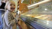 Les glaces pourront contenir des OGM - 24heures.ch | Abeilles, intoxications et informations | Scoop.it