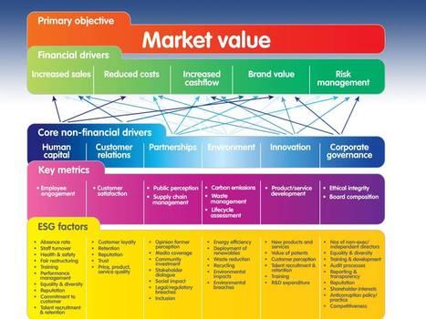 Valuing non-financial performance : Framework | Valuing non-financial performance | Scoop.it
