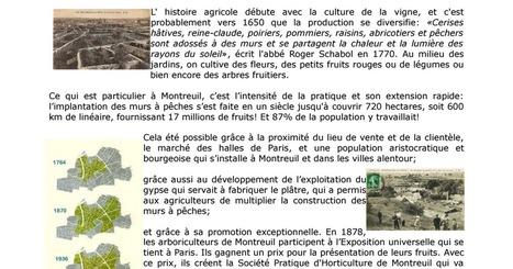 La restauration des murs à pêches de Montreuil, récit d'un chantier participatif, et boite à outils.pdf | (Culture)s (Urbaine)s | Scoop.it
