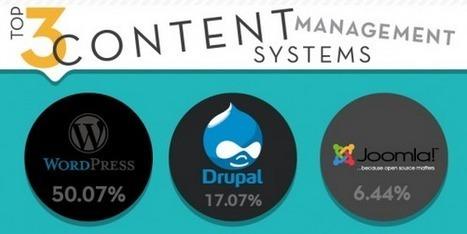 Les CMS les plus populaires en 2013 [infographie] | Collection d'outils : Web 2.0, libres, gratuits et autres... | Scoop.it