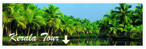 Kerala Tour Packages, Kerala Tour, Kerala Holiday Packages, Kerala Tourism, travel to Kerala, India tour package | India Holiday Vacation | Scoop.it