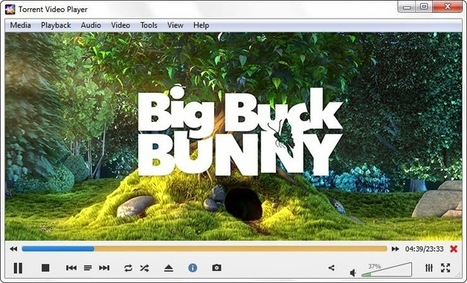 How to Watch Torrent Movies/Videos without Downloading   Just Like Geek's Tech Journal   DD's Blog   Scoop.it