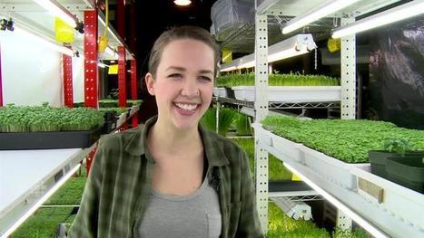 Urban farming growing in Edmonton   Alberta Food Geeks   Scoop.it