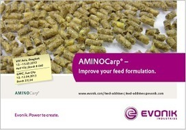 The Aquaculturists: Evonik | Global Aquaculture News & Events | Scoop.it