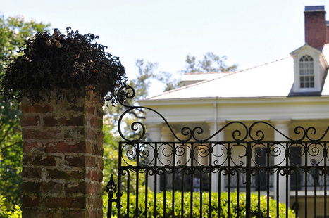 Oak Alley Plantation | Flickr - Photo Sharing! | Oak Alley Plantation: Things to see! | Scoop.it