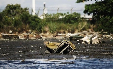 """Rio Pollution Latest Problem in Olympic-Bound City - Guardian Liberty Voice (""""lessons of pollution"""") 
