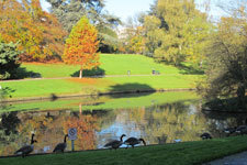 Rencontres du végétal 2013 : Vivre avec les plantes | Paysage et espaces verts | Scoop.it